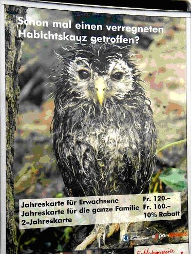 Zuerich_2007 (1)
